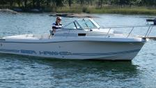 Chris Craft 215 Sea Hawk. Volvo D3