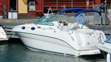 Sea Ray 240 Sundancer-2004