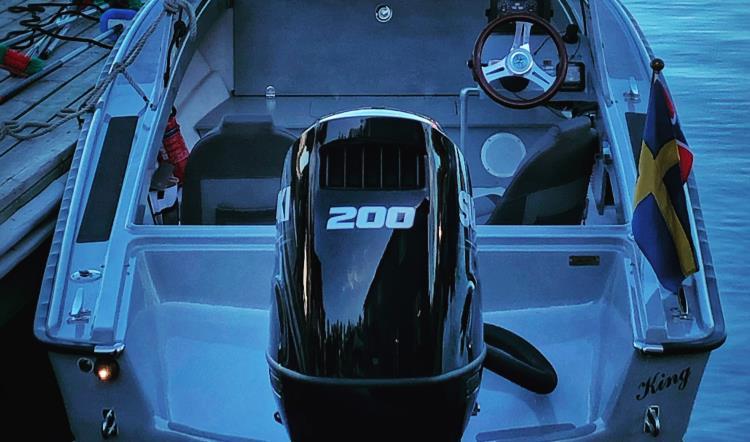 Suzuki DF200 APL